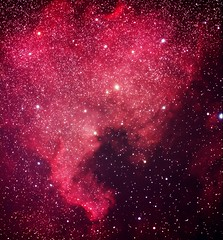 North America Nebula -  NGC7000 (AstroPhoto Guy) Tags: sky black beautiful america stars space north deep holes galaxy nebula planets astronomy astrophotograpy Astrometrydotnet:status=solved Astrometrydotnet:version=11264 Astrometrydotnet:id=alpha20090674179693