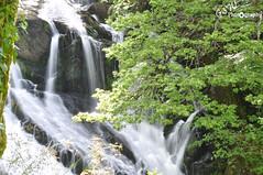 Wales 639 (Gavmonster) Tags: wales waterfall