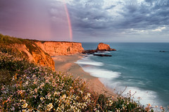 Rainbow Over My Pet Rocks - Davenport, California (Jim Patterson Photography) Tags: ocean california ca sunset sea sky cliff santacruz seascape storm beach nature clouds landscape outdoors photography rainbow waves pacific highway1 davenport bluff hwy1 majors petrocks pantherbeach nikkor1224mm nikond300 holeinthewallbeach beneathblueseas beneathblueseascom jimpattersonphotography jimpattersonphotographycom seatosummitworkshops seatosummitworkshopscom