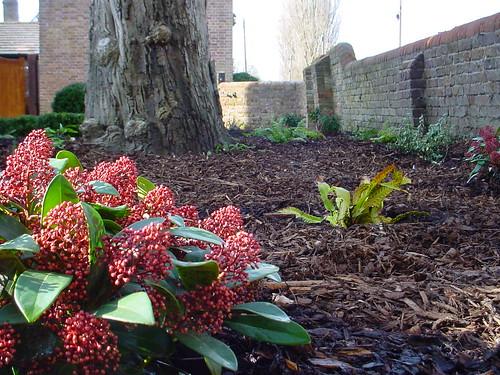 Landscaping Prestbury - Formal Garden  Image 23