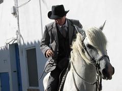 Serge au cheval