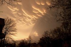Storm — Webber-Camden, Minneapolis (Tony Webster) Tags: storm minnesota minneapolis thunderstorm severeweather webbercamden cgo1511
