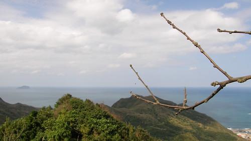 071.枯枝與基隆嶼