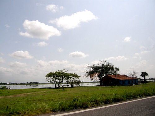P2010012