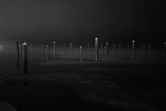 Fog Management (SIMMS8) Tags: fog night docks rhodeisland