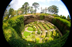 Umpherston Sinkhole (heritagefutures) Tags: fish eye tourism lens gardening landscaping sigma fisheye formation vegetation cave geology lush 8mm karst southaustralia sinkhole attraction mountgambier gambier mtgambier plantings naturalenvironment doline umpherston umpherstonsinkhole