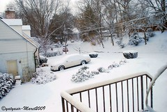 Winter 2009 - 009