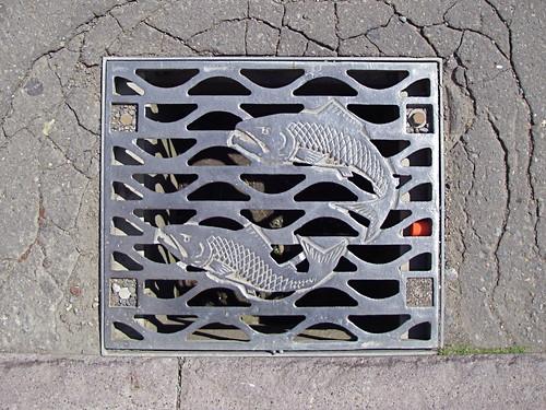 Kushiro sewer grate