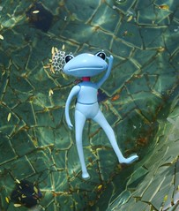 henry goes for a little swim (irulethegalaxy) Tags: wonder frog henry viii 8th henrythe8th studiouoo wonderfrog notatudor
