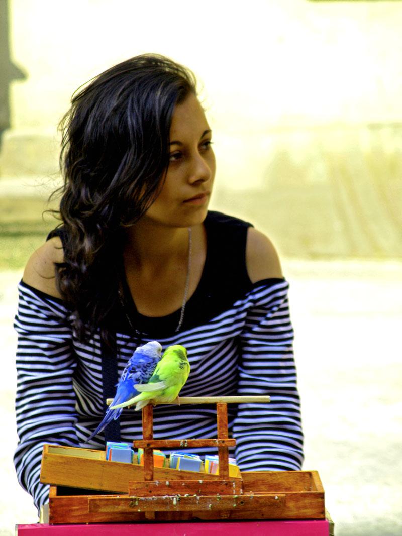 birds girl