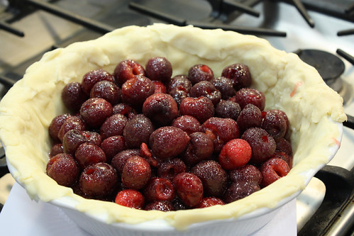 Cherries in pie Shell