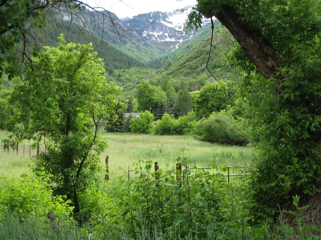 Old Farm in South Fork Canyon