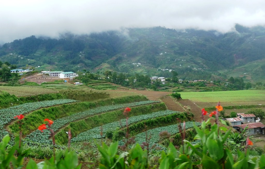 Route-Sagada-Baguio (110)