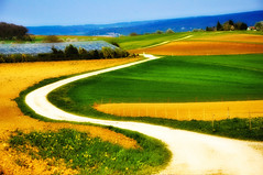Road through the colors (ceca67) Tags: road nature colors landscape switzerland spring path chapeau tistheseason d90 coth top20switzerland absolutelystunningscapes thehouseofimagegallery