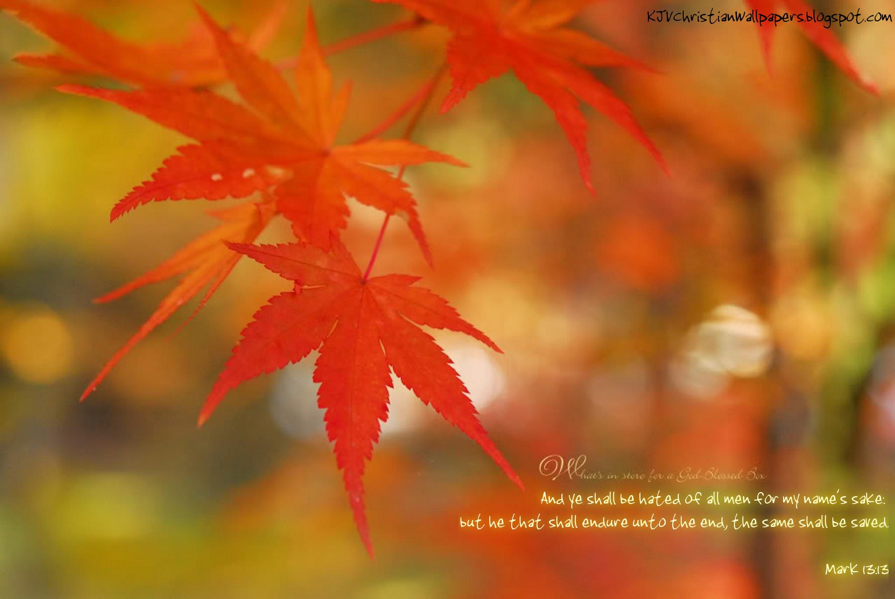 Autumn09-28-1