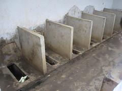 IMG_5707 (REAP China) Tags: rurallife worms hygiene z2011reaptrip zphotosfromscottsmith