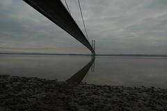 DSC_6366 (steve p2008) Tags: bridge humberbridge humber