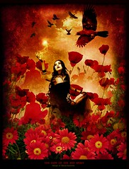 The lady of the red spirit (Marco Escobedo  Art / Design) Tags: light portrait music woman flower colour cute art girl smile face angel digital photoshop dark caballo skull gold photo nice mujer glamour paint hand graphic retrato extreme gothic luna exotic help fantasy cabeza dreams change fixed makeover retouch effect desing diosa transformacion gotico maquillaje bauty cirugia equino coolshot justimagine gotick manipulacin bratanesque memoriesbook theunforgettablepictures alemdagqualityonlyclub alemdaggoldenaward