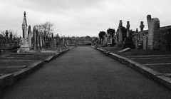 Lawrence_160308_0003 (Big_Law) Tags: grave yard