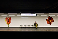 Sint-Katelijne (janbat) Tags: red white black flower fleur rouge nikon noir belgium belgique metro bruxelles oldman tokina d200 blanc f4 hombre assis siège homme 1224 sintkatelijne jbaudebert upcoming:event=1502250