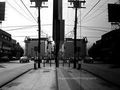 Realidad Alterna (Miguel Amador (Mikyto)) Tags: urban blancoynegro calle ciudad bn mcdonalds urbana monterrey semaforos realidad blackwithe callejera pinosuarez avenidapinosuerez