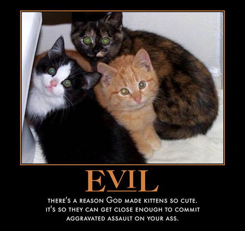 evil-kittehs by you.