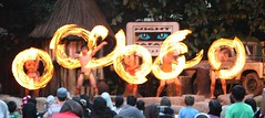 fire starter (Mummy Ed) Tags: zoo singapore mandai nightsafari