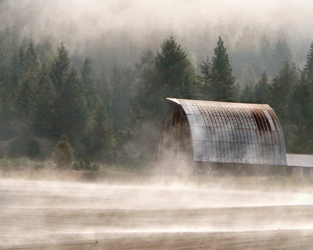 barn and fog