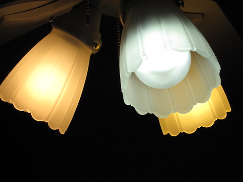 The Light Bulb Showdown Leds Vs Cfls Vs Incandescent Bulbs What S The Best Deal Now And