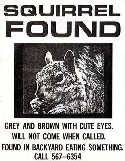 squirrelfound