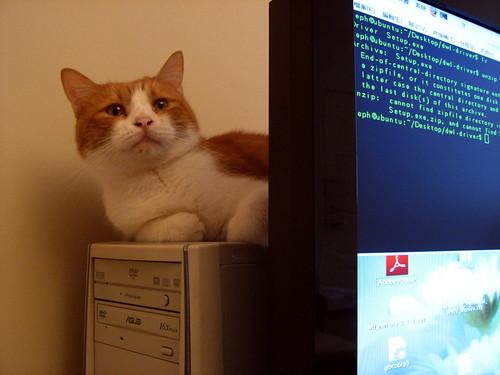 電腦後的查理