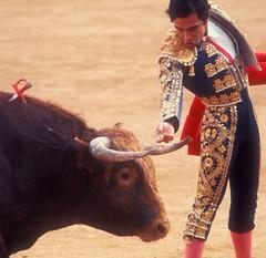 Last Stand (moedonno) Tags: bill rizzo matador