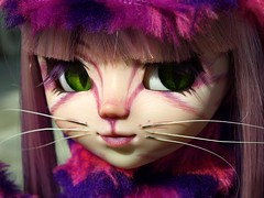 Chesire Cat  and Malice (Andraya's Custom) Tags: cat doll alice pullip wonderland chesire custompullip