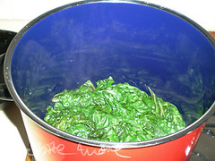 spinach in a pot