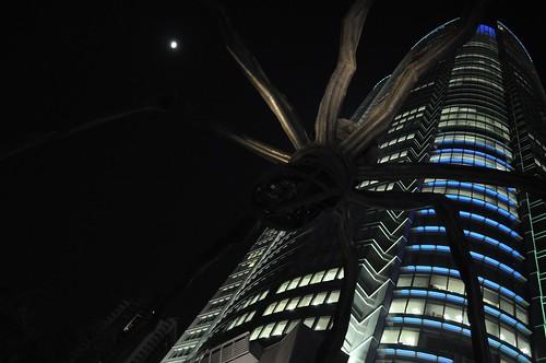 Mori Spider