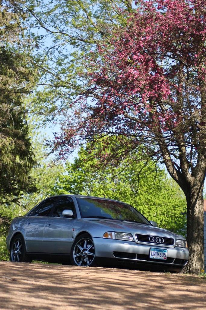 Audi in Spring