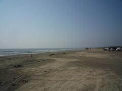 九十九里浜 (白子辺り)