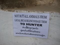 IMG_4088 (tomaszd) Tags: geotagged laos lao louangphabang banpakou geo:lat=2004969667 geo:lon=10221152333