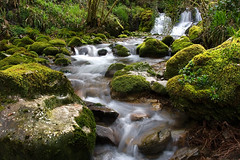 (Dany_79) Tags: espaa naturaleza color verde green nature water rio rock canon river spain agua asturias paisaje rios tineo navelgas regato