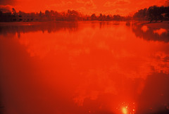 Aesthetically hot (kevin dooley) Tags: red arizona orange sun hot reflection 120 film water phoenix yellow analog 35mm lomo xpro lomography pond mood slim cross desert 110 wide az neighborhood 106 101 springs heat manmade 111 102 100 105 temperature chandler 112 viv vivitar processed ultra 103 107 116 108 104 109 115 119 gila 117 phx 114 118 113 aesthetic valleyofthesun redscale aesthetically vivalaviv ilovetherisingdegrees