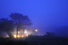 The Smoky Mountains [Tanzawa] (Yosuke Shiga) Tags: wood camp mist mountain japan fog forest climb lodge climbing smoky kanagawa tanzawa 丹沢