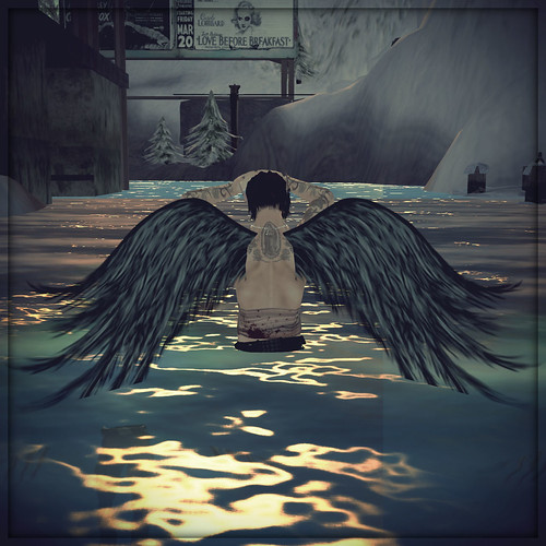 angelwings04