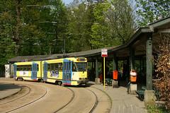STIB/MIVB 7719 - Tervuren (Fbio Gabriel) Tags: street city railroad brussels urban town belgium belgique transport bruxelles rail railway tervuren brussel ville urbain pcc 7700 stib mivb