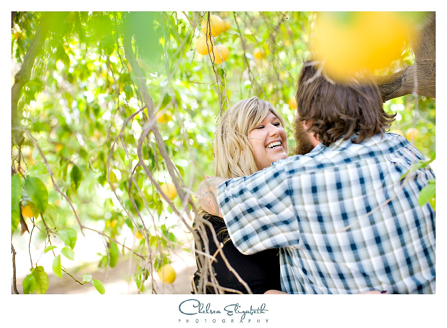 Engagement session in orange orchard