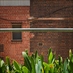 casselden-pl-8331-w (pw-pix) Tags: old bricks australia melbourne victoria walls thelon casseldenplace
