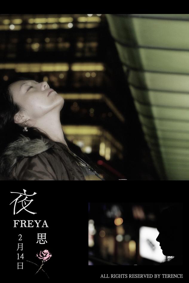 夜 思 2月14日--FREYA
