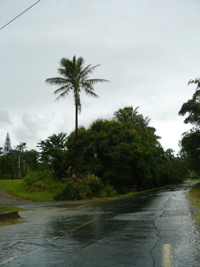 Depression tropicale fevrier 2009 Poindimie #7: Inondation des routes