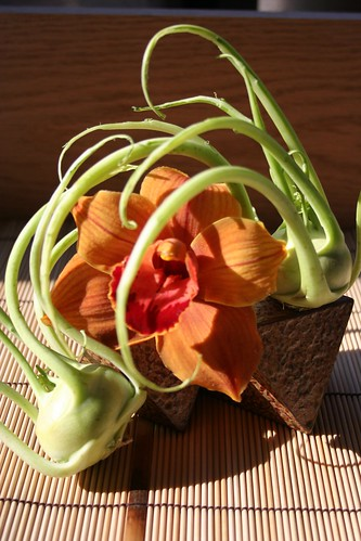 Ikebana-playful cymbidium orchid and kohlrabi