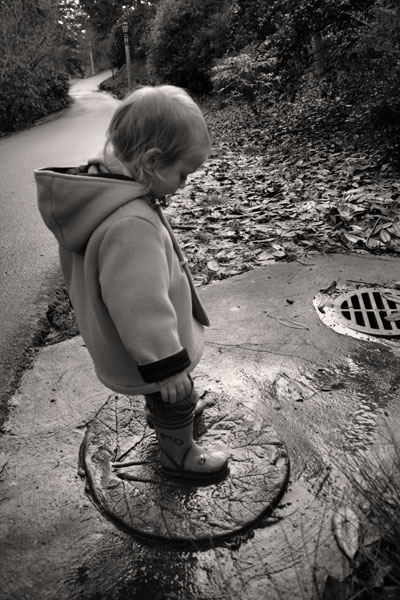 leaf-drain