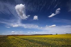 Campos de Castilla. (benitojuncal) Tags: santa sky clouds canon y 10 leon cielo nubes semana campos zamora castilla 22mm montamarta
